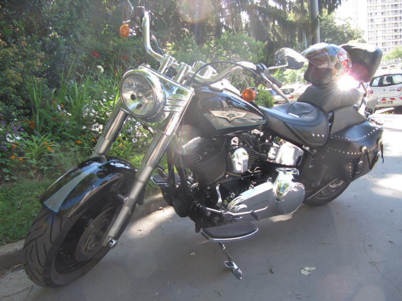 annonce moto harley davidson fat boy custom de 2008 villeurbanne n 1488137. Black Bedroom Furniture Sets. Home Design Ideas